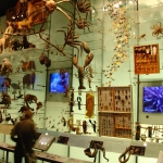 Hall of biodiversity