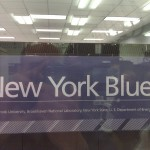 New York Blue